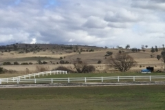 2-rail-white-horse-fence-from-distance