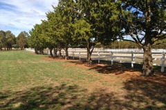 Bounce Back ® horse fence compliments the most beautiful of properties.