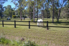 Durability, strength and safety are provided by Bounce Back ® horse fence.