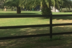 Classic 3 rail Black Horse Fence