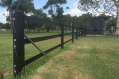 3 Rail Black Horse Fence