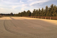 Horse-Arena-Fence-Brown-2-rail-timber-posts