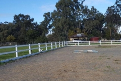 Horse-Fence-Arena-white-timber-posts-from-inside