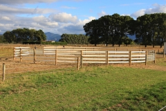 Our white rail provides for this striking round yard. This high fence and our flexible rail make this round yard the ideal safety solution.