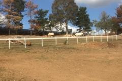 Horse Gallary Star Picket Sleeves