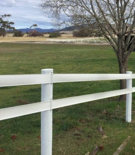 2 rail white horse fence