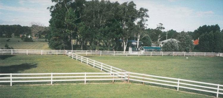 Safe Horse Fencing, elevated shot
