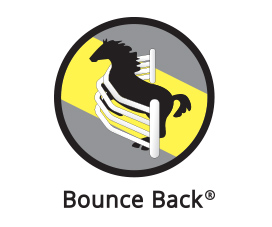 Logo of Bounce Back - Horse Fencing