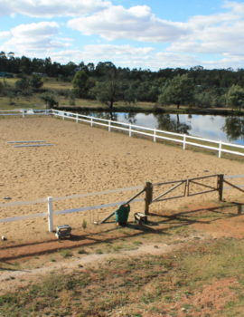 Bounce Back ® horse fencing provides for a classical timber look fence for you horse arena.
