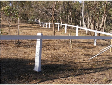 White - Horse Sight Rail