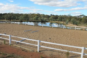 Horse Arena Fence - white dressage arena fencing