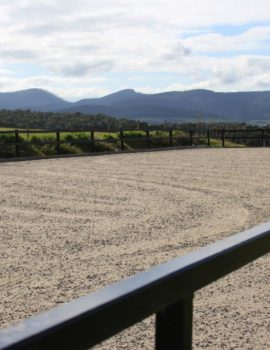 Horse Arena Fence Packages
