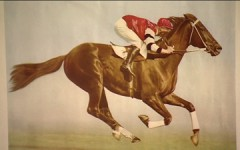 Pharlap - keeping horses safe
