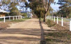 Transform you horse property after shot