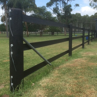 Horse Fence Posts – What are the options?