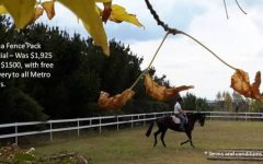 November 2016 horse arena fence sale