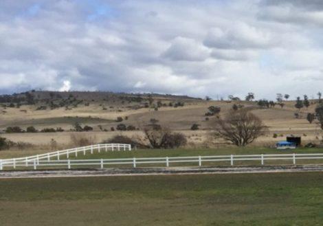 white horse fence tasmania