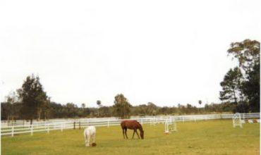 horse fencing australia