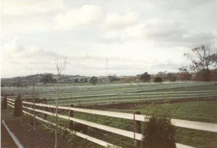 horse fencing australia 30 years