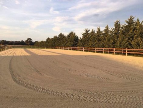 brown rail imber posts - horse arena fence